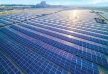 MENA's solar capacity to rise drastically by 2023 despite COVID-19 impact: MESIA