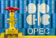 OPEC+ will continue with cuts to attain market stability: OPEC Official