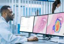 Can Artificial Intelligence help Cancer Detection? Studies show promise