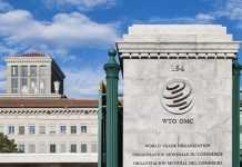 WTO T20 Saudi
