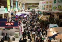 Dubai Exhibition Image
