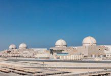 Brakah Nuclear Power Plant Image