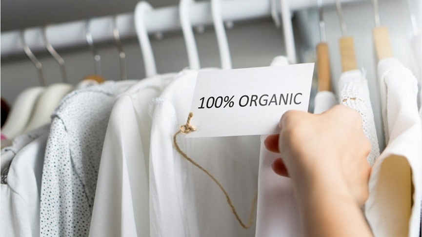 Organic Clothes Image