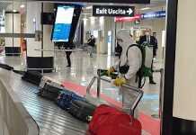 Fiumicino Airport Image