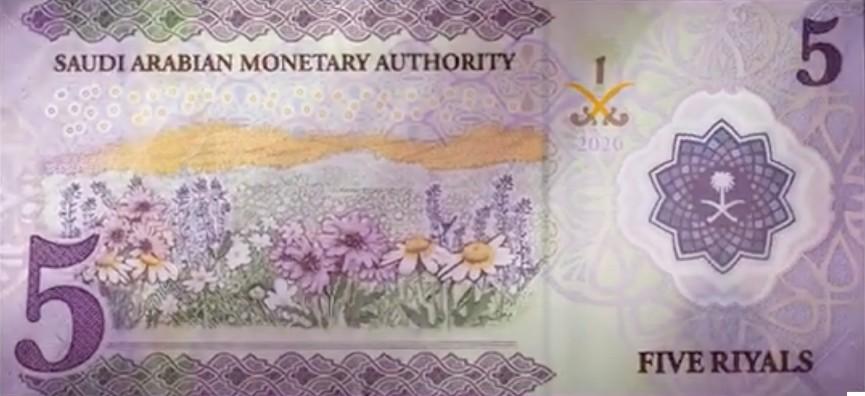 Saudi Arabia Polymer Banknote image