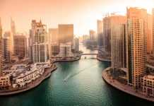 UAE steps up sustainable shift with focus on health & well-being