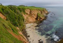Chathams Island Image