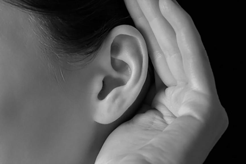 Ears Image