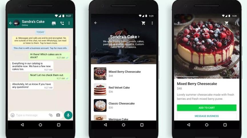 WhatsApp Shopping Button Image