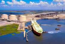 Untapped LNG resources to contribute 30% of total output by 2050: GECF
