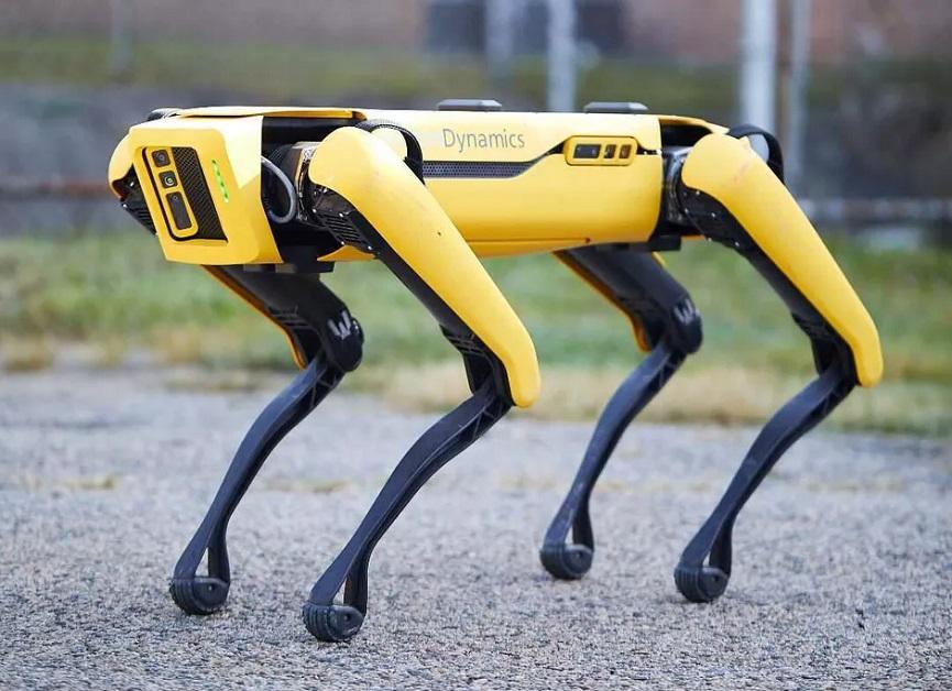Spot Robot