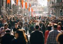 Crowd of People Image