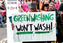 Green Washing Image