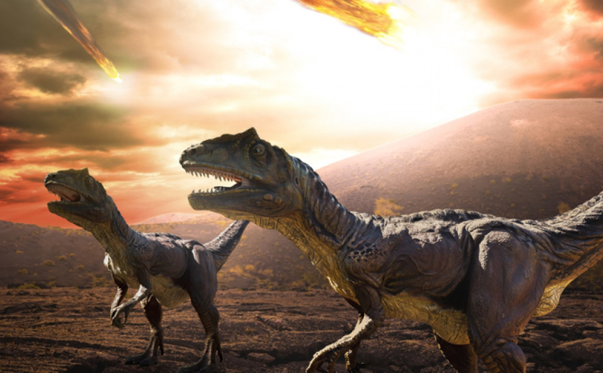 Dinosaurs and Comet Image