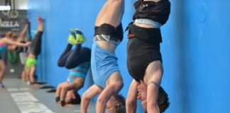 Handstand Pushup Image