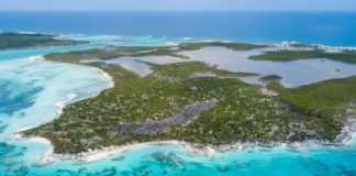 St Andrew's Island Image