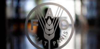 FAO Image