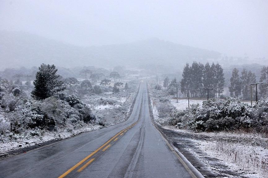 Brazil Frost
