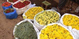 Madurai Flowers