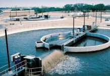 Synergistic efficiencies of TSE & CEA play key role in UAE's food & water security