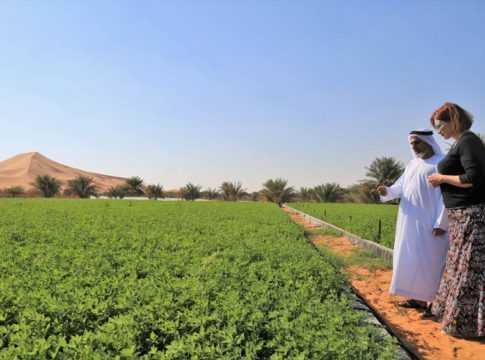 GCC Business News UAE Food Strategy image